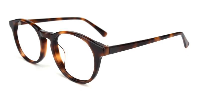 Concept-Tortoise-Eyeglasses