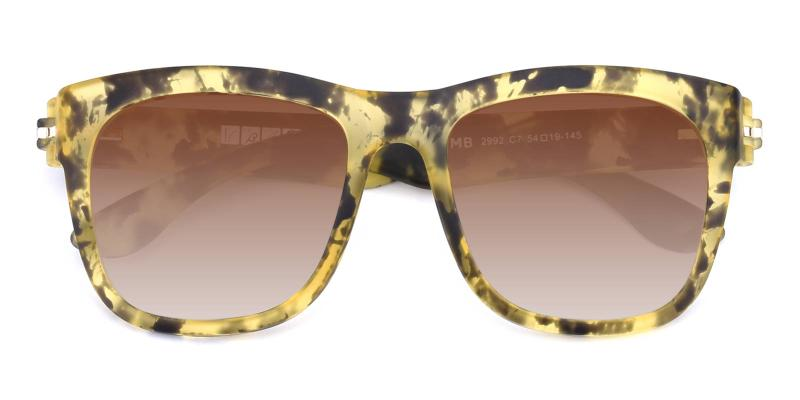 Paris-Pattern-Sunglasses / UniversalBridgeFit