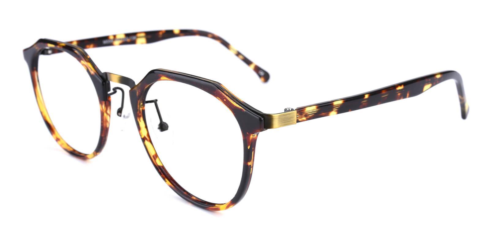 Intense-Leopard-Geometric-Combination / Metal / TR-Eyeglasses-additional1