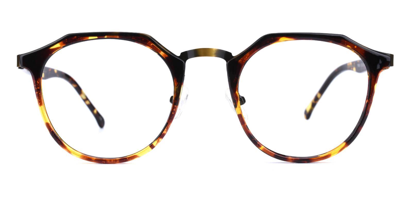 Intense-Leopard-Geometric-Combination / Metal / TR-Eyeglasses-additional2