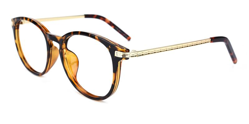 Gambia-Tortoise-Eyeglasses